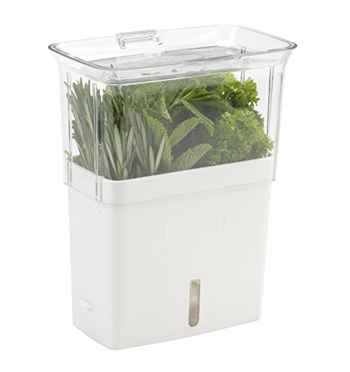 Cole & Mason Indoor Herb Garden Planter