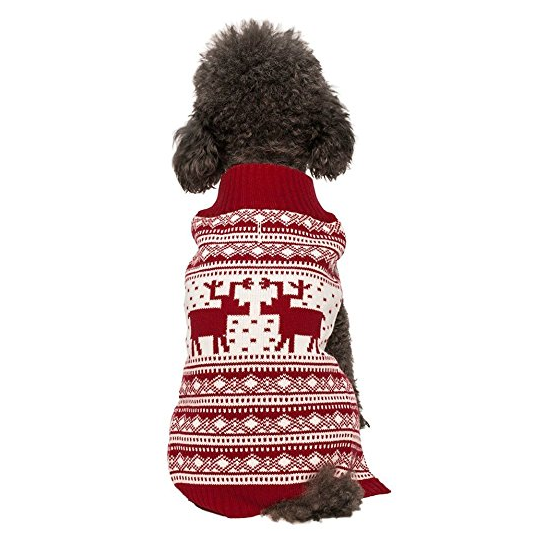 Blueberry Holiday Festive Dog Sweater