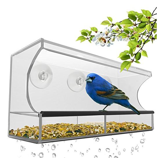 Nature's Hangout Window Bird Feeder with Removable Tray, Drain Holes and 3 Suction Cups