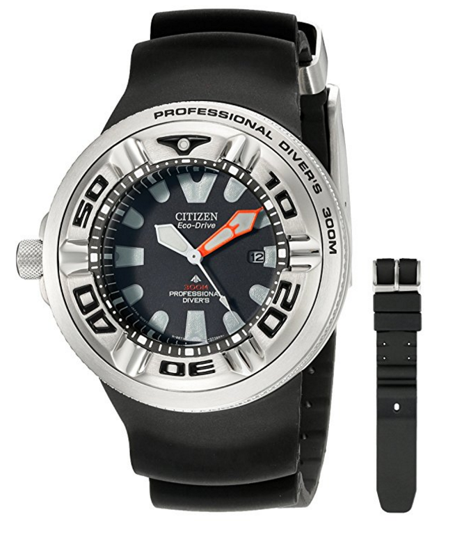 Citizen Professional Diver Watch