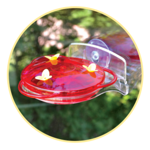 More Birds 3-in-1 Hummingbird Feeder