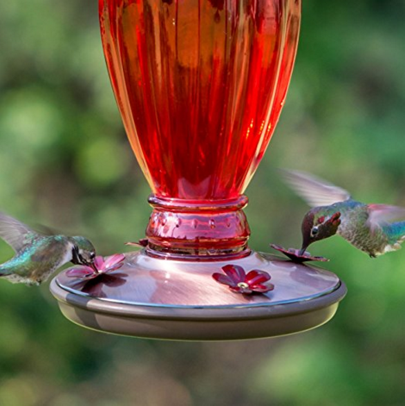 Perky-Pet Vintage Hummingbird Feeder