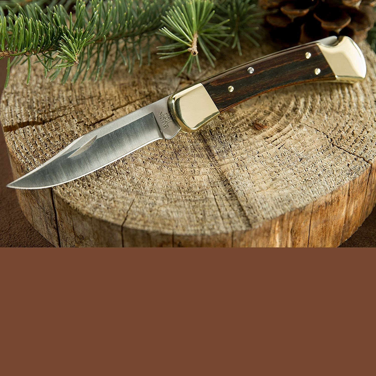 Buck Knives 110 Folding Hunting Knife