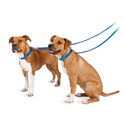 PetSafe Nylon Easy Hook Dog Leash