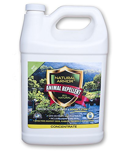 Natural Armour Concentrate Animal Repellent