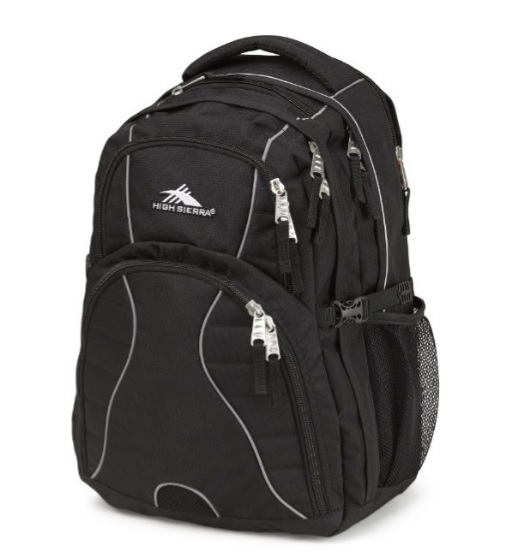 High Sierra Everyday Backpack, Available in Multiple Colors, Fits Laptops up to 17""