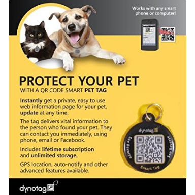 Dynotag GPS Enabled Steel Pet Tag