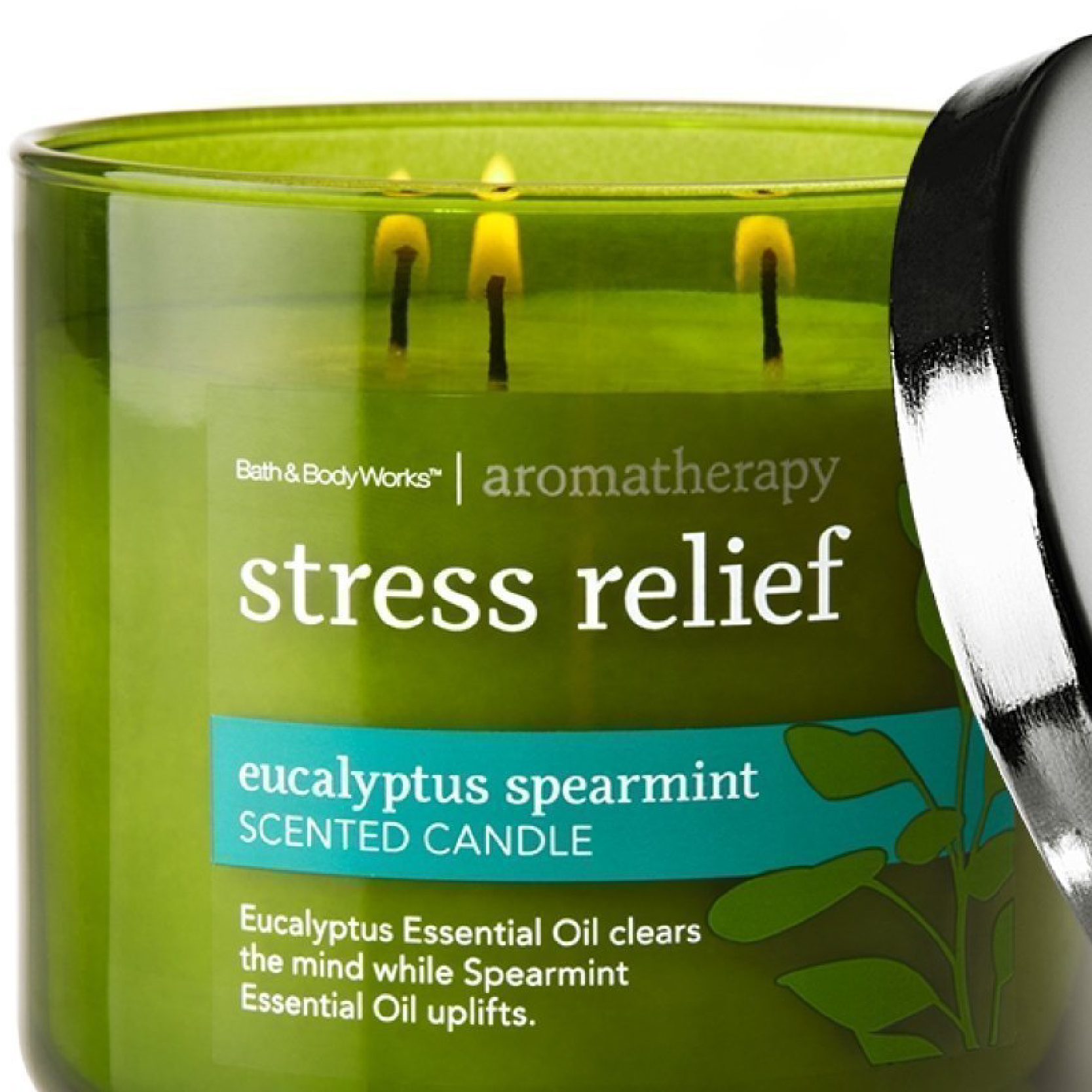 Bath and Body Works Eucalyptus Aromatherapy Candle