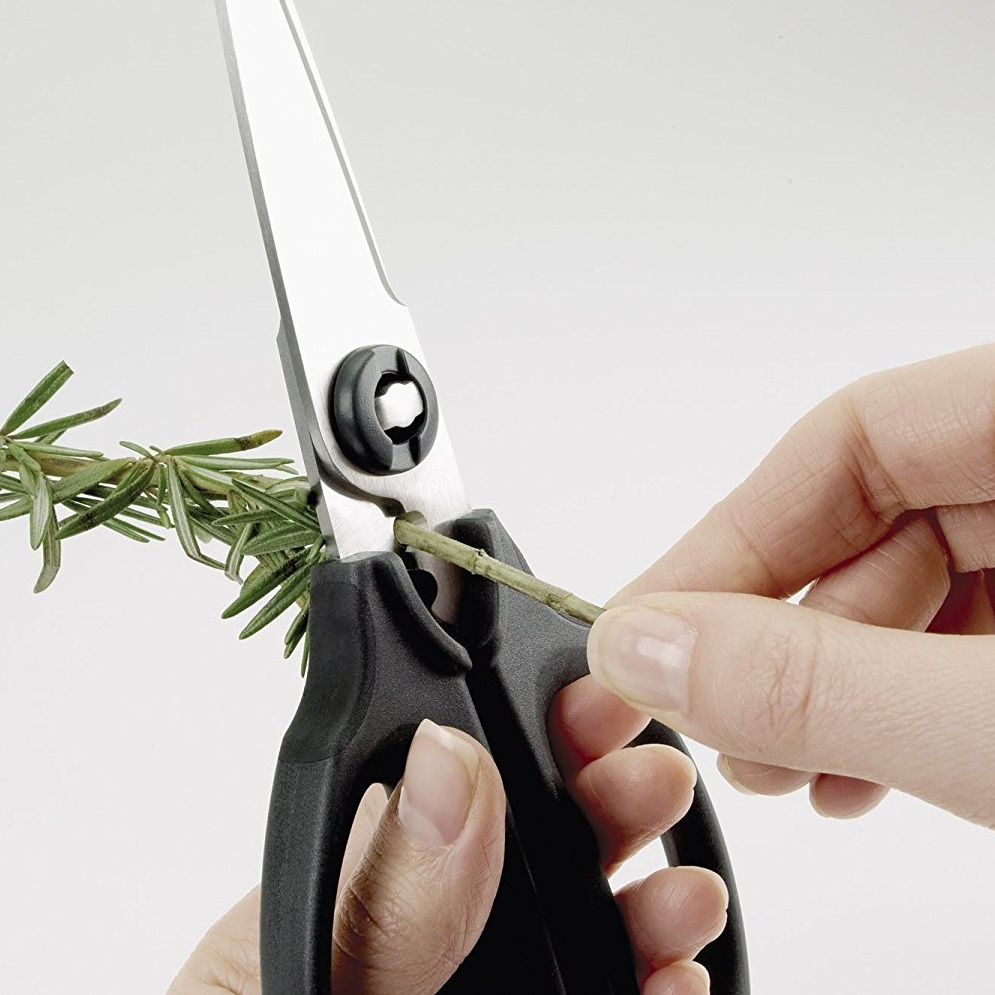 OXO Kitchen and Herbs Scissors