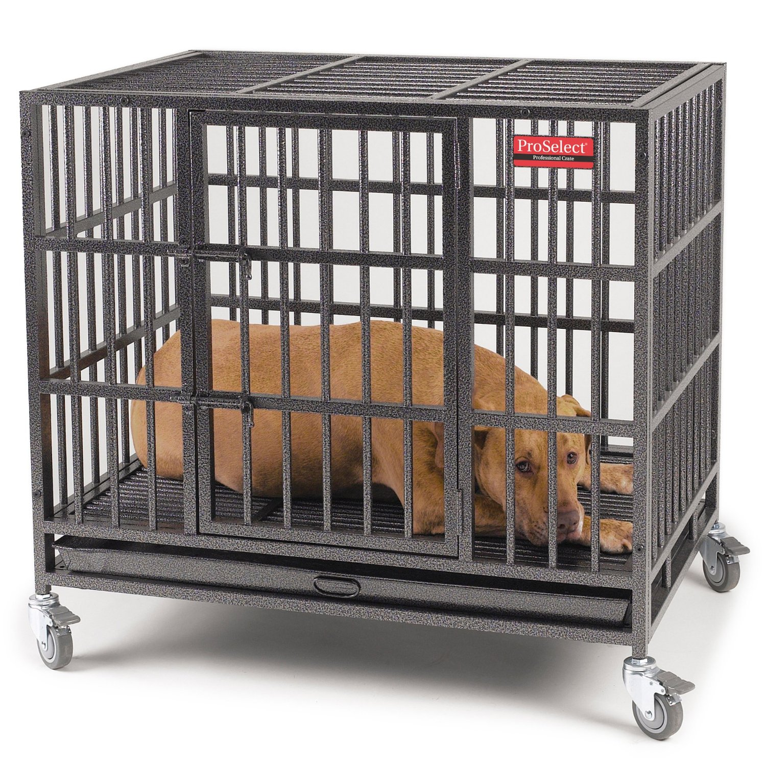 ProSelect Empire Dog Cage w/ Heavy-Duty Welds – 2 Sizes