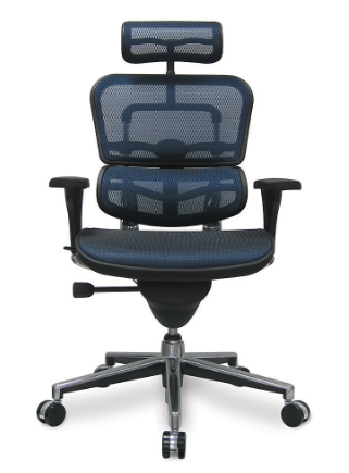 Ergohuman Ergonomic Desk Chair with High Back, Headrest and Mesh