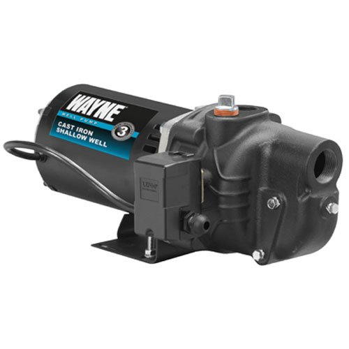 Wayne Cast Iron Shallow Well Jet Pump — Available With or Without Expert Installation