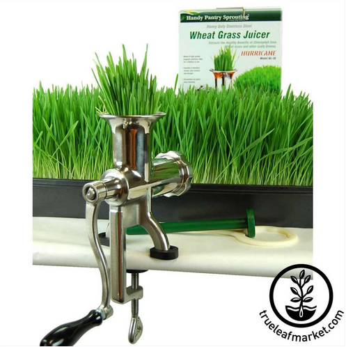 Handy Pantry Hurricane Manual Wheatgrass Juicer