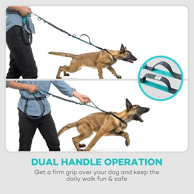 TaoTronics Hands Free Retractable Dog Leash