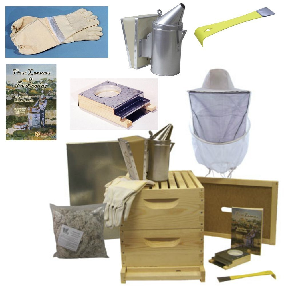 BuildaBeehive Deluxe Bee Hive Starter Kit