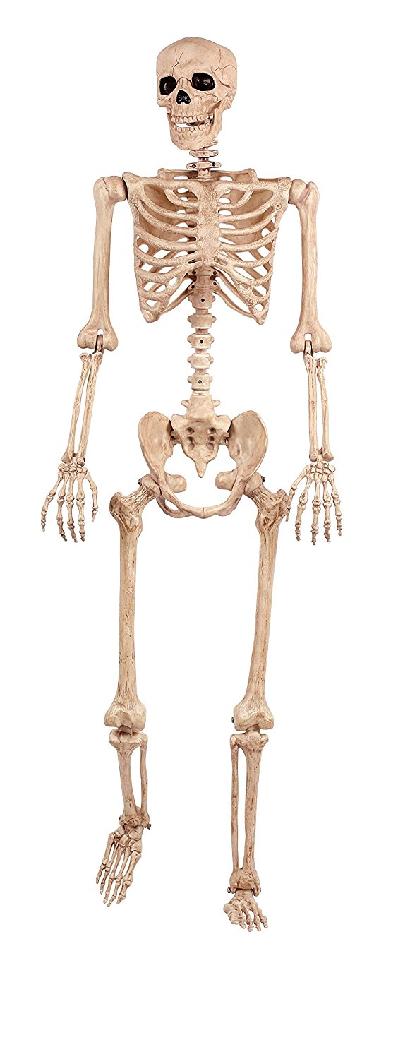 Crazy Bonez Pose-N-Stay Skeleton