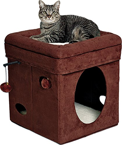 MidWest Homes For Pets Curious Cat Cube Cat Shelter