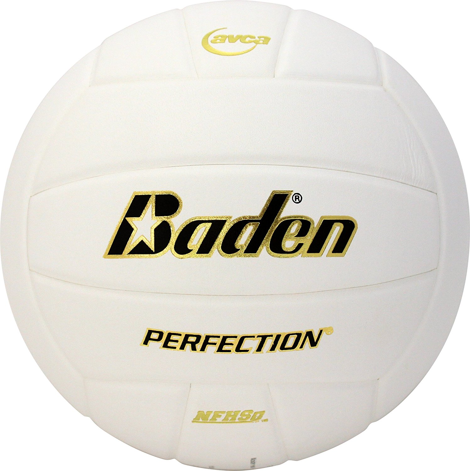 Baden Perfection® Leather Volleyball