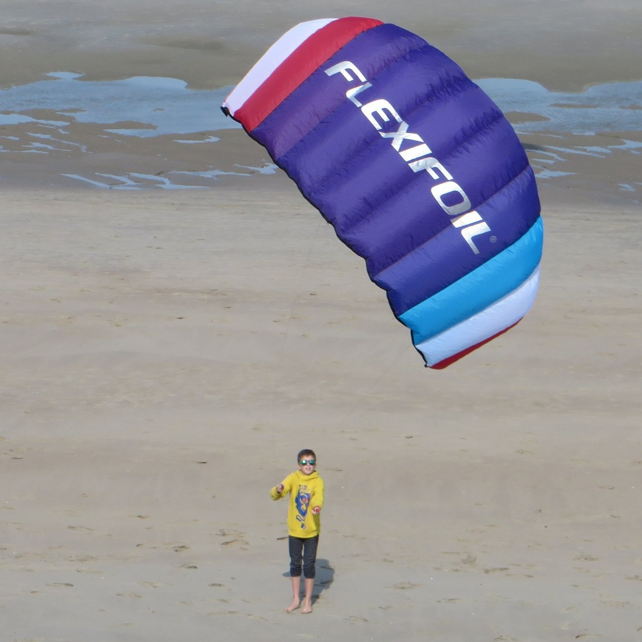 Flexifoil Buzz Power Kite