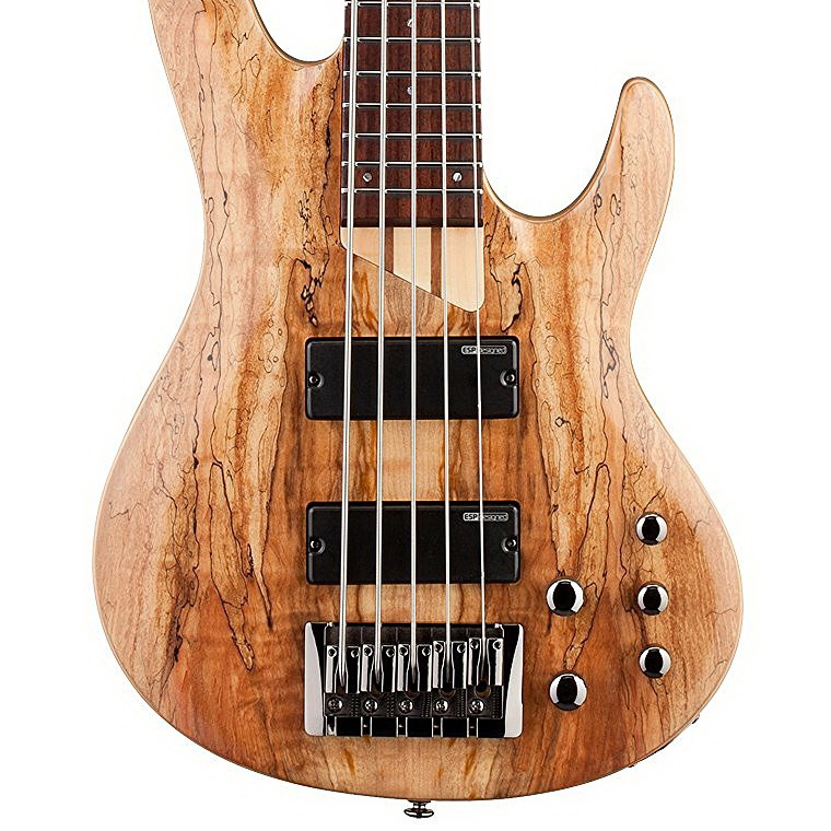 ESP LTD B Series B-205 Bass Guitar