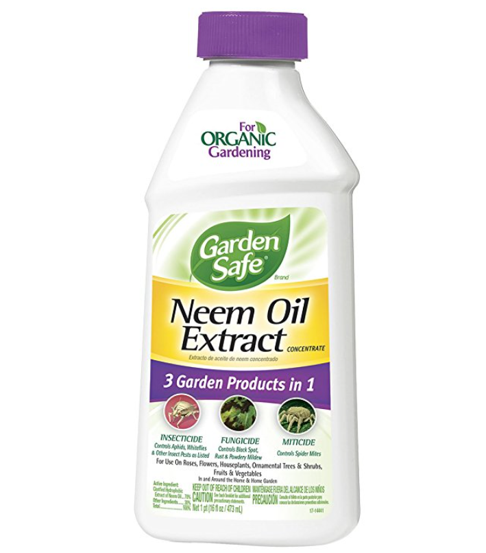 Garden Safe Neem Oil Extract Concentrate