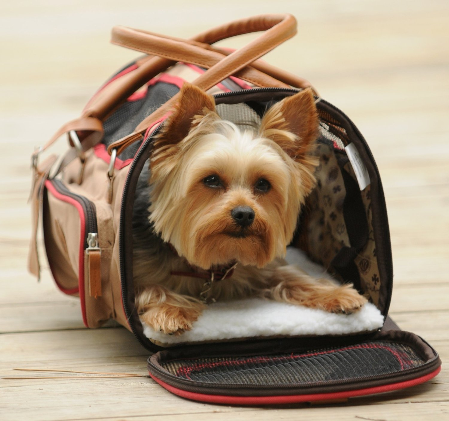 Sherpa Element Duffle Carrier for Dogs, Cats and Small Animals