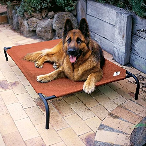 Coolaroo Gale Pacific Cot Style Pet Bed