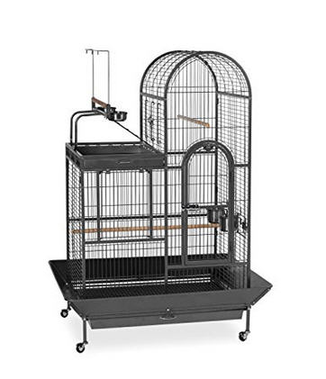 Prevue Pet Products Deluxe Parrot Bird Cage with Playtop Bird Cage
