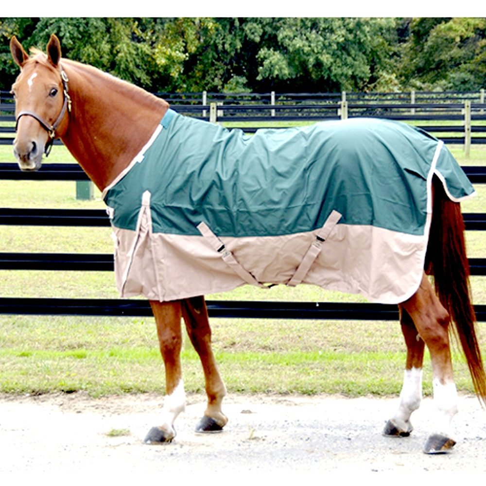Intrepid International Free Runner Turnout Rain Sheet – Available in 5 Sizes, 3 Colors