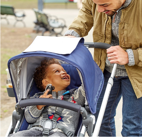 UPPAbaby VISTA Convertible Stroller