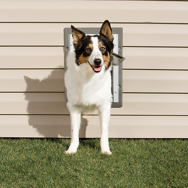 PetSafe Wall Entry Aluminum Pet Doors