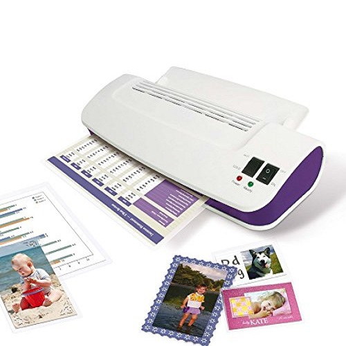 Purple Cows Hot and Cold Laminator