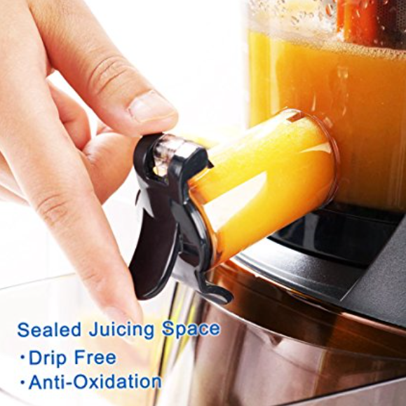 SKG 2-in-1 Juicer & Food Processor