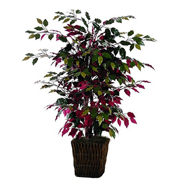 Vickerman 4' Artificial Capensia Bush – Available in 3 Different Pots