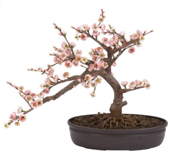 Nearly Natural Artificial Bonsai Silk Tree